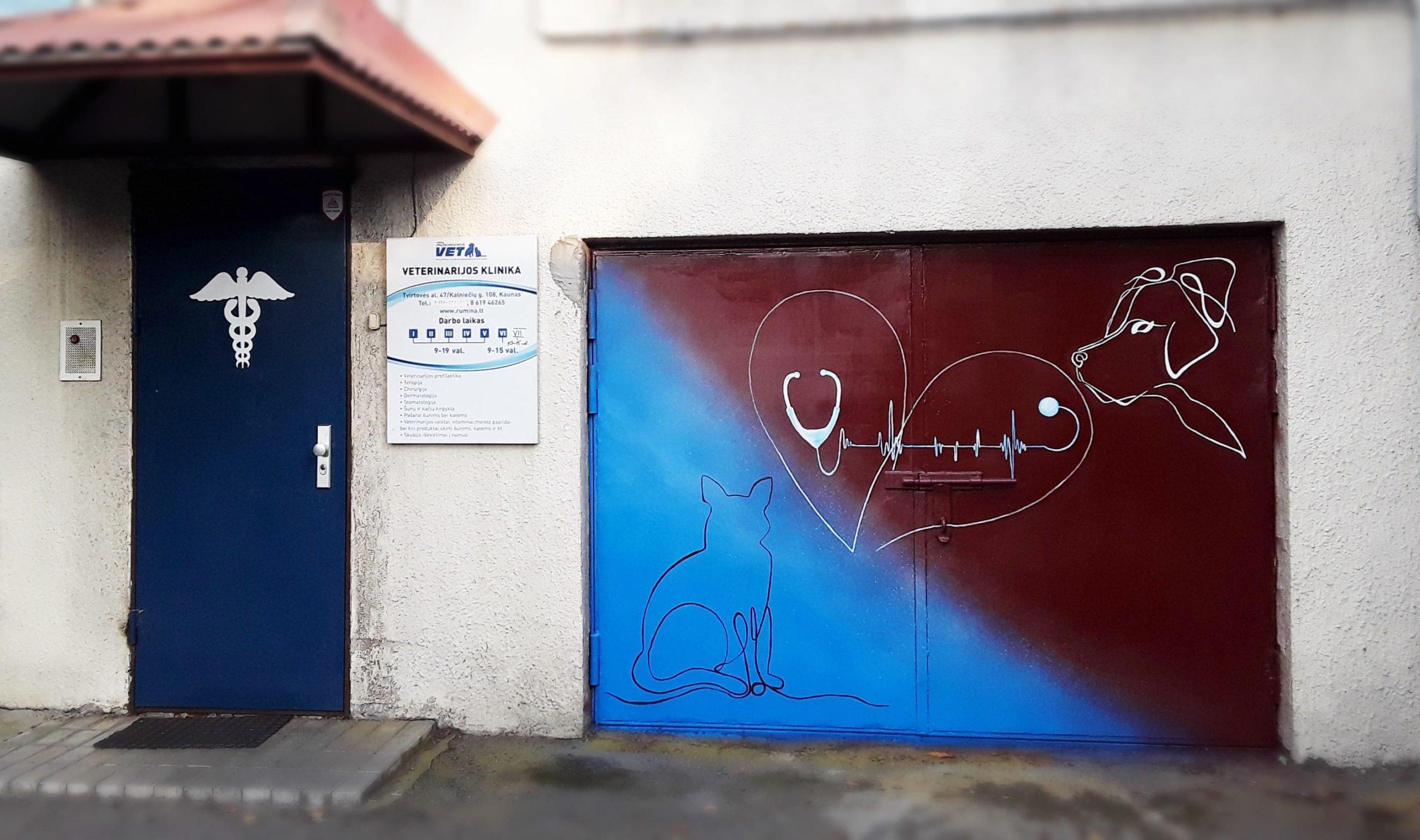 menine-kuryba-sienu-dekoravimas-fasadai (21)